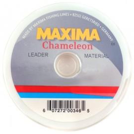 Maxima Cameleon