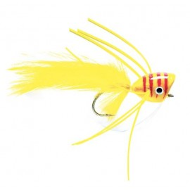 Bass Popper Yellow & Red
