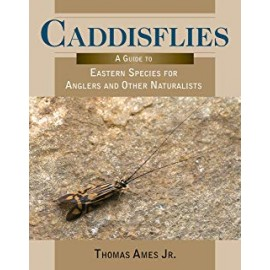 Caddisflies - Guide To Eastern Species