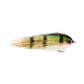 Clydesdale Golden Perch