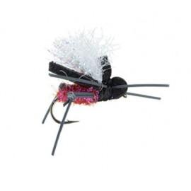 Aj's Ringo Beetle - N14