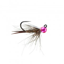 Brillon's Lucent Prince Jig - Rose