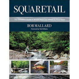 Squaretail : Guide To Brook Trout and where to find them